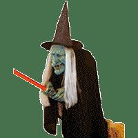 аксессуары ведьмы
