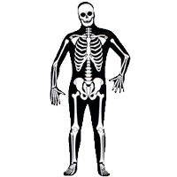 Костюмы скелетов
