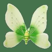 Крылья насекомых