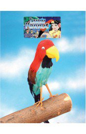 Бутафорский попугай пирата 40см фото